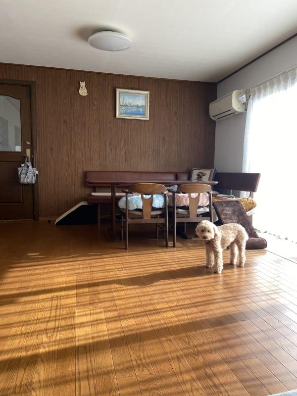 室内の様子です。 テーブルを囲んでワイワイ楽しくお過ごし下さい。 - Smile Family ドッグラン付き多目的スペースの室内の写真