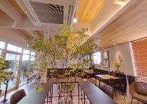 観葉植物が空間の気持ちよさを引き立てます - コプラス コワーキングカフェ イベントスペースの室内の写真