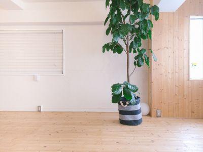 【東銀座】ハスヨガ 無垢床ヨガスタジオ|ヨガマット有の室内の写真