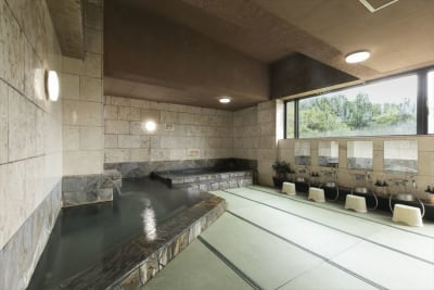 疲れたら天然ラジウム 温泉でリフレッシュ! - 鬼岩湯本館 個室ワークスペースの室内の写真