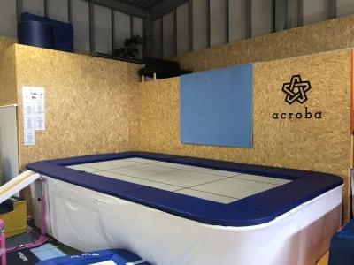 競技用トランポリン - Acroba(アクロバ) 運動施設・大型スペース・用途多数の設備の写真