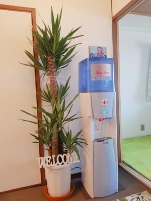 植物とウオタ―サーバーでお出迎え - ご縁カフェ金山レンタルルーム 洋室と和室★2部屋でゆったり空間の設備の写真