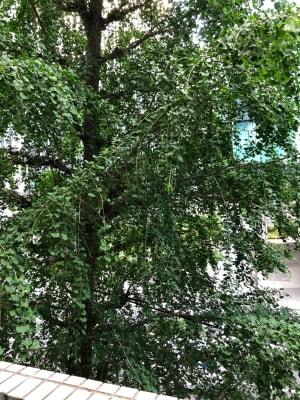 ランドプレイス新宿南口のその他の写真