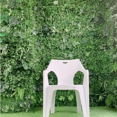 他のスタジオにはなかなか無い緑化壁。床も柔らかい人工芝なので座って撮影もOK。 - スタジオ羅寂RAJAQの室内の写真