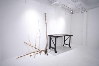 SHOWCASE ショールーム・個展・販売・展示等の設備の写真