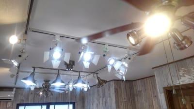 可動式照明 - hair ROOK るうく 2F 貸スタジオの室内の写真