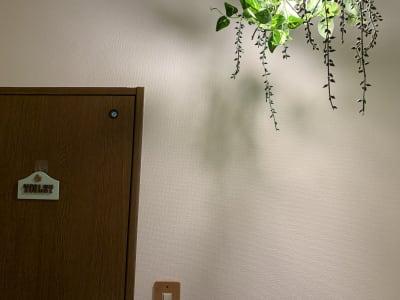 ボタニカルな雰囲気の照明 - Kuuma Paikka ヨガスタジオ、フェイシャルエステのその他の写真