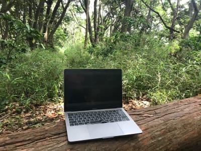 近くの森に行って青空ワーケーション。 - ThinkSpace鎌倉 囲炉裏の間・畳の間のその他の写真