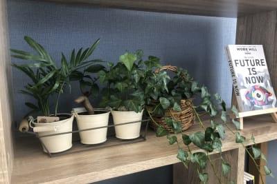 グリーンのある癒しの空間 - 【forspace代々木Ⅰ】 多目的スペース(2F)の室内の写真