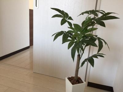 LQ天神橋三丁目セラピールーム スタジオ|ベッド3台のレッスン可の設備の写真