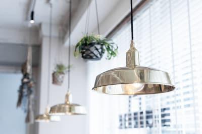 窓際のペンダントライトです。天井から植物も吊り下げられています。 - HOLDER roppongi  ラウンジスペースのその他の写真