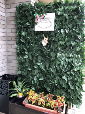 玄関前 - 飲食出来る【カフェラッテ】 多目的スペースの入口の写真