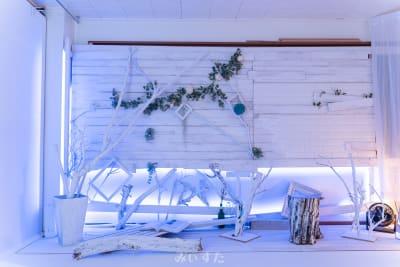 シャビーな板壁と枝 - レンタルスタジオ「みぃすた」 レンタル撮影スタジオの室内の写真