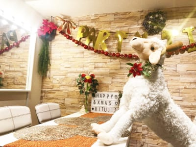 お友達とパーティー!女子会〜 - 渋谷ひつじハウス プライベートスペース!パーティーの室内の写真