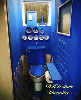 3F bluetoilet - D403レンタルBLUEROOM 多目的403ブルールームの設備の写真