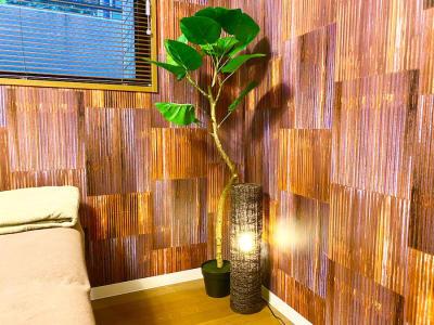 間接照明、観葉植物 - FOROLA 〜RENTAL PLACE〜の設備の写真