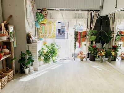 大きな観葉植物(ペレ)がお出迎えします♪ - レンタルスタジオ 多目的スペースの入口の写真