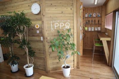 シェアオフィスippo 執務室 1~2人用の入口の写真