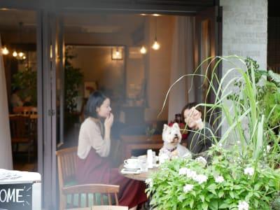 7RoomsHotel&Cafe ホテル併設のお花カフェ!の室内の写真