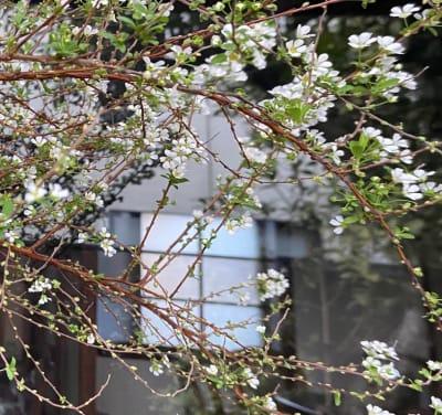 四季折々のお庭 - よふ葉 【貸し切り】レンタルスペースの室内の写真
