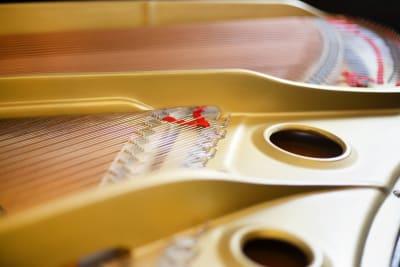 定期的な調律を行っております。 - ピアノスタジオコローレ レンタルピアノスタジオの室内の写真