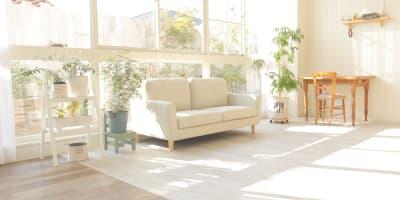 2Pカウチソファ - ブルックススタジオ テラス付きハウススタジオ の室内の写真