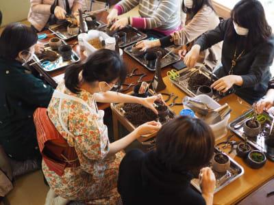 こちらは盆栽教室の様子 - yue 貸しスペースの室内の写真