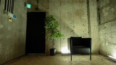 コンクリート打ちっぱなしで撮影にも最適! - in the house Hatagayaの室内の写真