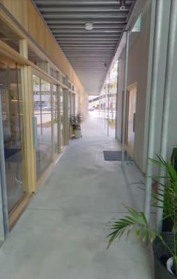 廊下にもグリーンがあり気持ちの良いスペースに - コプラス コワーキングカフェ イベントスペースの入口の写真