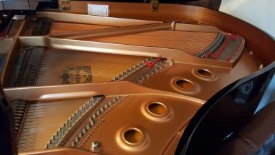 グランドピアノ内部 - グランドピアノサロン 風の音 2台ピアノ利用(3名様以上)の設備の写真