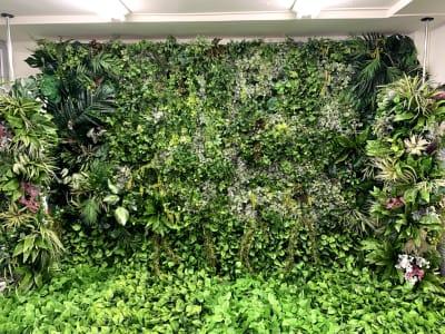 南国感漂うグリーンのセット - ハナグラフィ スタジオ、レンタルスペースの室内の写真
