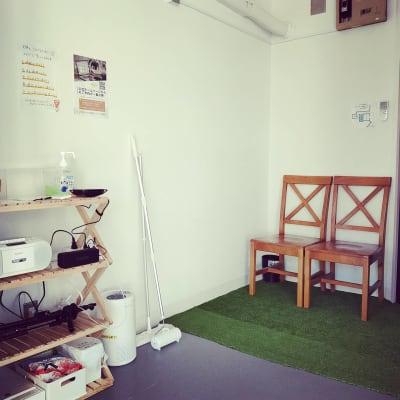 バレエバー用に手触りのよい木製椅子をご用意いたしました。 - レンタルスタジオ国立リノ 国立サニービルの室内の写真