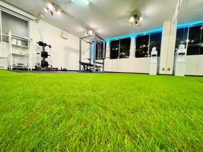 人工芝フロア搭載 - レンタルスタジオNEXT ダンス・ヨガスタジオの室内の写真