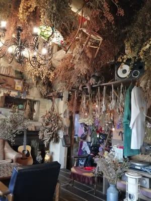 椅子が上からつるされたりぬいぐるみが上から覗いております。 - KEDI BASKAN フォト撮影スペース、結婚式前撮りの室内の写真
