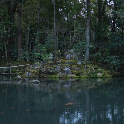 豊かな自然も楽しめるエリアです。 - mado プライベートワークスペースの室内の写真