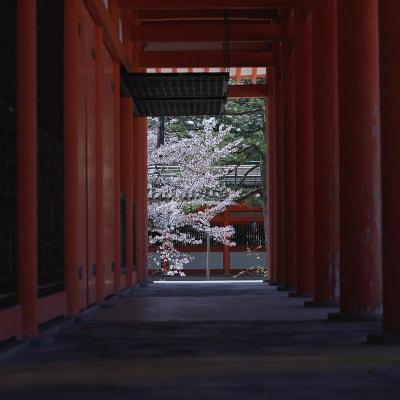 平安神宮まで徒歩15分。ランドマークの大鳥居までは徒歩10分です。 知恩院、八坂神社なども徒歩圏内で歴史と文化を感じながらお過ごしいただけます。 - mado プライベートワークスペースの室内の写真