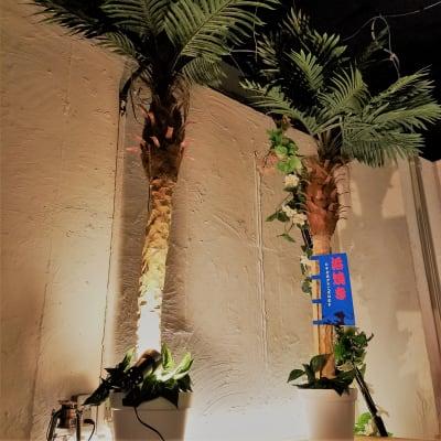 白を基調とした室内で、リゾート気分♪ - 渋谷ピカリエ道玄坂本店の室内の写真