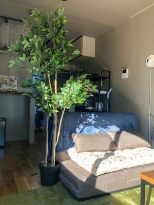 ゆっくりお休みできます😌 - Sonaroom Sonaroom1a✨【高崎市】の室内の写真