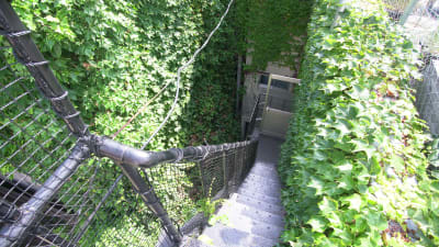 屋上までの階段。急になってますので、18歳以上の方のみのご利用でお願い致します。 - KLASI COLLEGE 屋上プライベートBBQスペース①の設備の写真