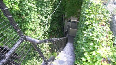 屋上までの階段。急になってますので、18歳以上の方のみのご利用でお願い致します。 - KLASI COLLEGE 屋上プライベートBBQスペース②の設備の写真