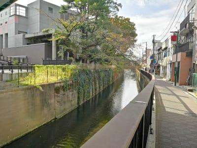 ホテルすぐ横にある川‐妙正寺川 - ゲストハウスqiao(チャオ) スペース301のその他の写真