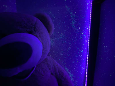 星空のように光る押し入れ🌟ぜひ、入ってみてね☆彡~ - おうちでキャンプ幟町公園前の設備の写真