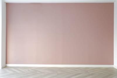 ピンクの壁 - 代々木スタジオ 代々木/白壁/自然光撮影スタジオの室内の写真