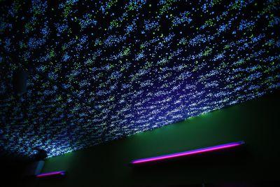 天井 - ARUKAビル ARUKAスタジオの室内の写真