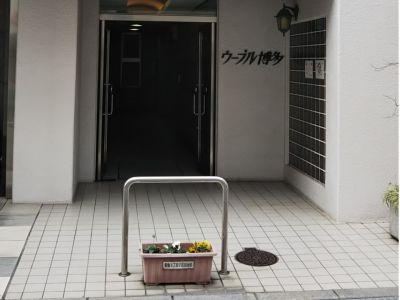 Costa博多1 博多駅徒歩4分自由自在会議室の入口の写真