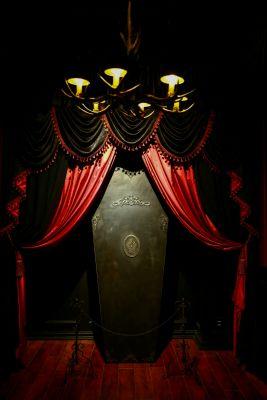 Studio Rosarium 2F「シュヴァルツヴァルトの獣」の室内の写真