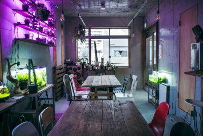 【下北沢徒歩3分】wifi完備!カフェバーのオシャレな内装でパーティやイベント会場、撮影スタジオ、ワークショップ、展示会など! - カクタス